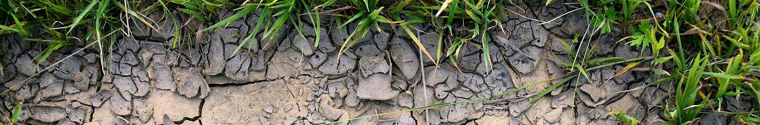 Alerte sécheresse – Le préfet renforce les mesures d'économies d'eau