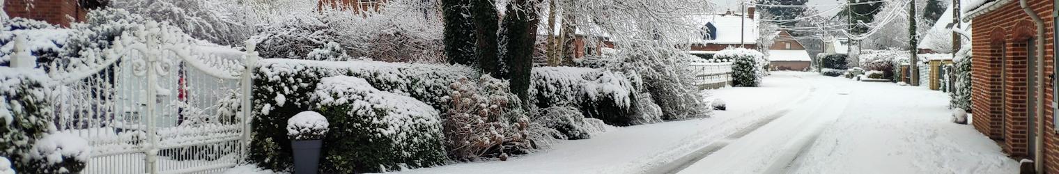 Solidarité neige et grand froid
