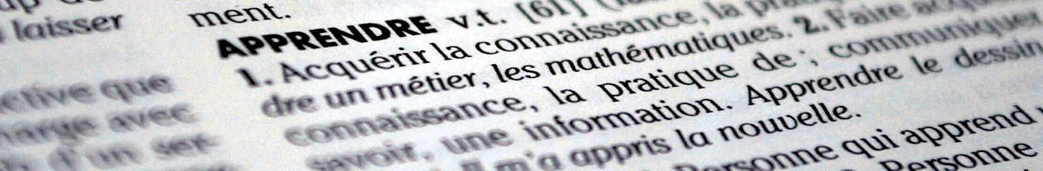 Remise des dictionnaires aux élèves de CM2